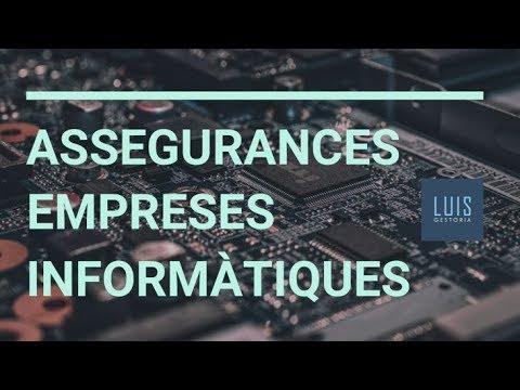 Assegurances d'empreses informàtiques
