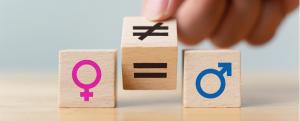 obligaciones para empresas para elaborar un plan de igualdad en materia de igualdad laboral obligaciones para empresas en materia de igualdad